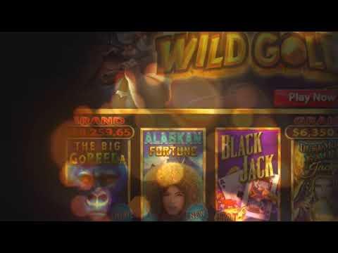 Casino som accepterar official