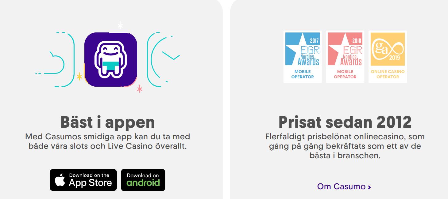 Casino utan insättning casinospelare