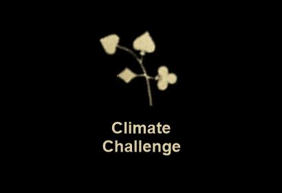 Miljardvinst lotto TV ekstra